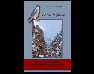 Le vol du faucon