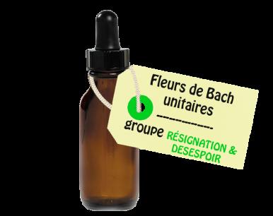 """Fleurs de Bach unitaires - """"RÉSIGNATION DÉSESPOIR"""""""