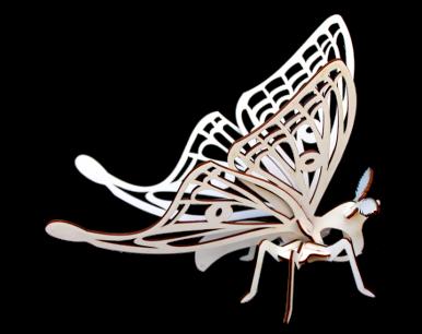 Papillon 3D